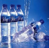 Mineral Water Bottle Making Machine Mineral Water Production Line RO Water System