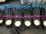 Knife Gate Valves with Protector