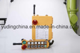 Electrical Industtrial Wireless Radio Remote Controls F24-12D