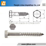 Top High Quality DIN571 Standard Screw