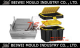 High Quality Plastic Tool Box Mold