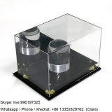 Professional Custom Large Acrylic Display Case