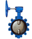 DF326 Lug Type Butterfly Valve With Double Axis