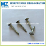 Electro Galvanized Twisted Shank Clout Roofing Nail