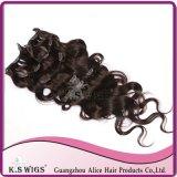 Clip in Hair 100% Peruvian Virgin Human Hair