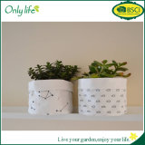 Onlylife BSCI Fabric Planter with Waterproof PVC Inside