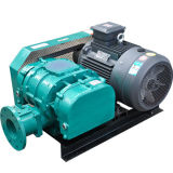 Roots Blowers for Sewage Treatment