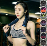 Quick Dry Wire Free Push up Yoga Sports Bra