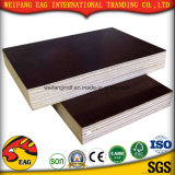 Brown/Black Film Faced Plywood with Good Quality for Construction