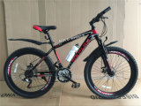 26 Inch Steel Frame Mountain Bike with Disk Brakes (AOKMB005)