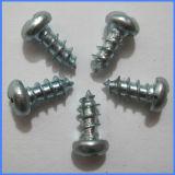 Guangzhou Supply Zinc Coated Pan Head Self-Tapping Screws