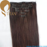 Clip Remy Human Hair Clip in Hair Extension