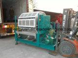 China Most-Advanced Egg Tray Processing Machine