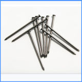 China Common Wire Nail Supply Made in China