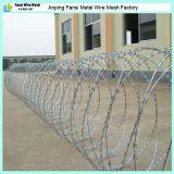 High Quality Galvanized Cheap Razor Wire Price