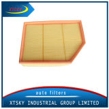 Xtsky Manufacture High Performance Air Filter 13717521033 with Competitive Price