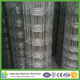 10/47 Goat Mesh Fencing Hot Sale for American Market