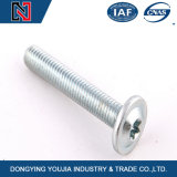 Round Head Screw with Hexalobular Slot