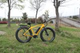 26 Inch 500W Mountain Electric Bicycle with En 15194 Approval for Adult