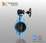 Rubber Coating Gearbox Operated Butterfly Valve (D371X-10/16)
