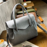 2017 New Simple Hand Bag Popular Women Crossbody Bag Hcy-3007