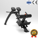Adjustable Roman Bench Popular for Gym Hotel Fitness Center Use