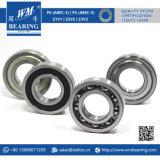 Chrome Steel Motor Engine Deep Groove Ball Bearing (6207-2RS/-ZZ)