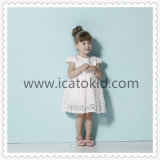 Fancy Lace Cap Sleeve Princess Girls Birthday Dress for Children