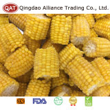 Frozen Sweet Corn Cobs with Top Quality