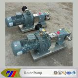 Stainless Steel Rotor Pump /Gear Pump