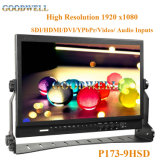 "16: 9 Broadcast Grade 17.3"" LCD Display"