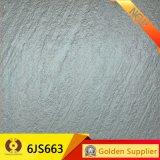 New Design Glazed Ceramic Floor Tile (6JS663)