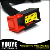 High Quality Electronic Automotive Wire Harness for Citroen