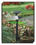 Solar Spot Light with Motion Sensor