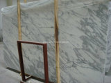 Arabescato White Marble Slab Tile for Floor Wall Countertops