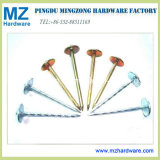 "9g*2.5"" Colorful Galvanized Roofing Nail with Umbrella Head"