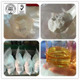 Raw Material Chloramphenicol CAS 56-75-7 with Good Activity for Antibacterial