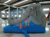 Inflatable Slide Fireproof Inflatable Sports Games (SL-0103)