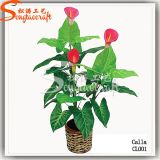 New Design Home Decoration Plasticartificial Bonsai Flower