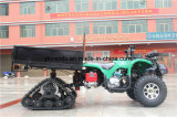 Big Storage Green Black Farm ATV with Snow Tire