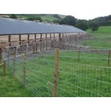 Livestock / Field / Farm / Grassland Cattle / Sheep / Fixed Knot Fence