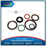 Auto Parts NBR Rubber Oil Seal (various)