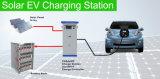 Solar Chademo CCS EV Charging Station