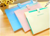 Factory Direct Printing Custom File Folder with Cmyk Printing