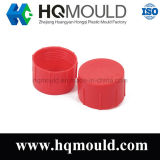 Professional Manufacturer Plastic Injection Capmolding
