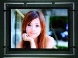 Window Display LED Advertising Slim Light Box (CDH02-A4L-02)