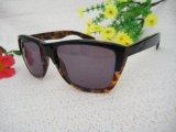 New Trendy Design Acetate Sunglasses for Man/Woman