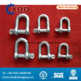 Electric Galvanized European Type Large Dee Shackle