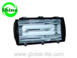 (TL-5104) 300W Tunnel Lighting for Induction Light