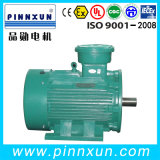 Ybk2 Electric Motor 45kw Explosion Mine Motor